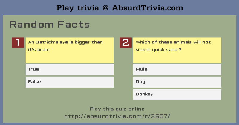 Trivia Quiz : Random Facts